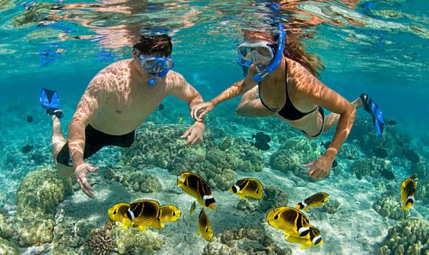 Practicar snorkeling o buceo con tubo - Turismo responsable